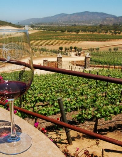 Tour the Wine Route